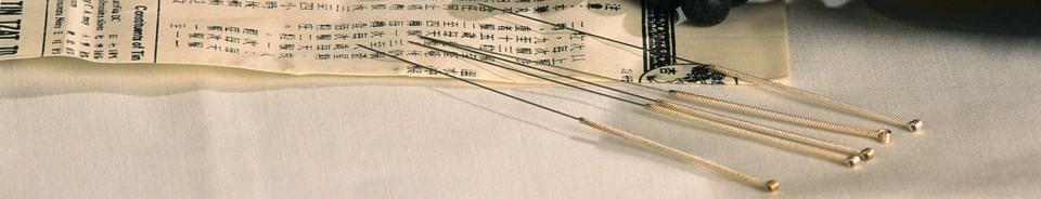 Konstitutionelle Akupunktur Leitbahntherapie Frauen-Naturheilkunde